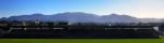 Fitz Stadium Baner